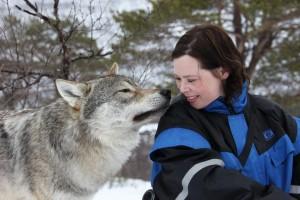 Wolf und Mensch im Polar Park, Bardu. Foto: Roger Johansen