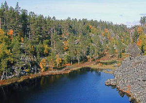 Øvre Pasvik Nationalpark