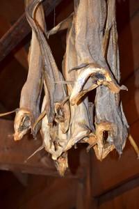 Stockfisch-Lofoten