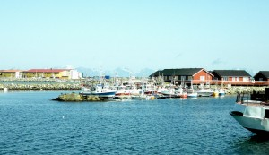 Im Hafen von Andenes