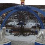 Hammerfest und der Eisbärenclub (Quelle: panoramio.com)