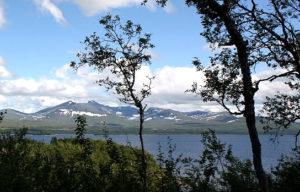 Skarvan og Roltdalen NP